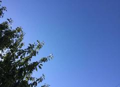 Ciel Melle 79500 Ciel bleu en ce dimanche 14 août