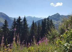 La montagne est belle