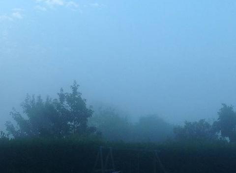 Brumes matinales sur la campagne de Fauguernon