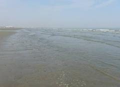 Plage de Dunkerque  ce matin.