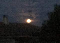 Peine lune