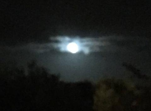 Lune d'�t�