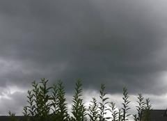 Ciel mena�ant en Alsace.