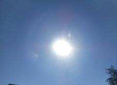 Soleil  voil�.....et  chaleur  montante....