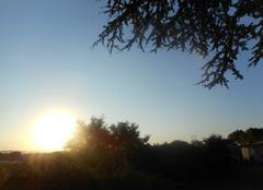 Soleil  levant....voil�....  mais  ciel  bleu...