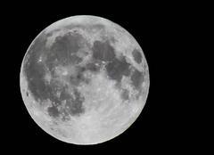 Pleine Lune depuis ma terrasse