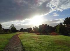 Soleil et nuages dans un paysage rempli de ros�e � 09h11