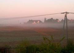 Brume dans les champs se matin