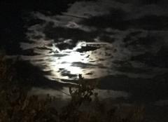 La lune derri�re les nuages