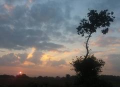 Lev� de soleil