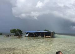 Mer Sainte-Rose 97115 Guadeloupe