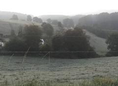 Gelée blanche