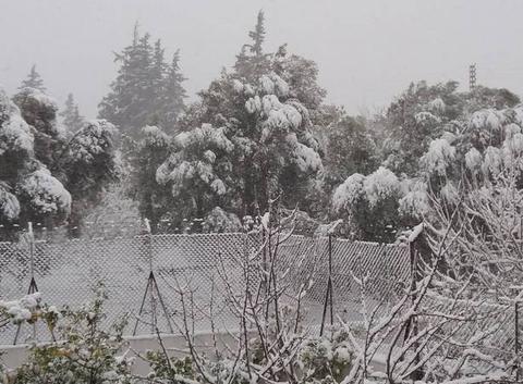 Tlemcen sous la neige .
