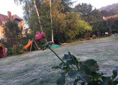Il a encore gel� aujourd'hui