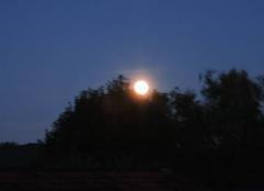Lev� de pleine lune � Maurs (15)