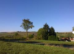Sous le soleil en Alsace.