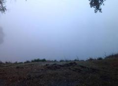 Etang dans le brouillard