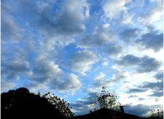 Ciel bleu l�g�rement nuageux, presque printanier
