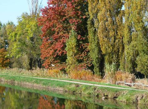 Automne au bord du Canal du Centre