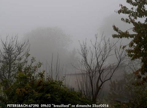 Brouillard !