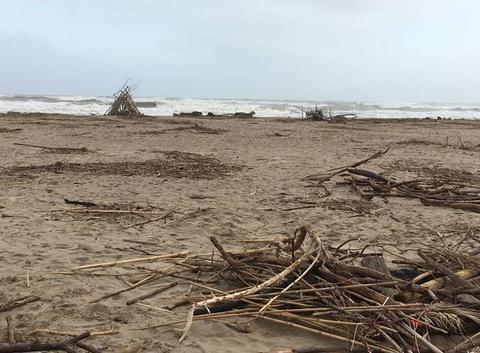 La plage recouverte de bois