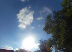 Soleil   et    mistral....dans   la   vallée   du   rhone....