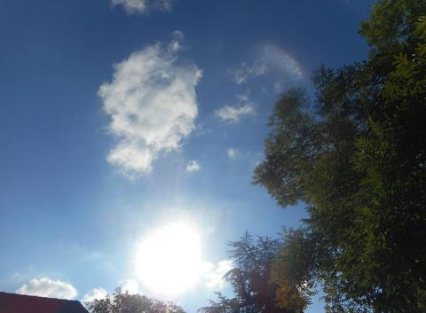 Soleil   et    mistral....dans   la   vall�e   du   rhone....