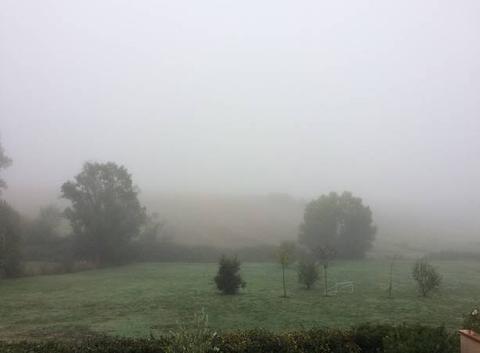 Brouillard �pais 7degr�s � 10h30