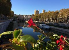 Soleil de Narbonne