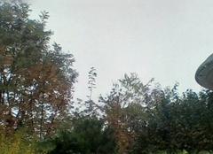 Brouillards persistants, température basse