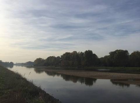 Les bords de Loire
