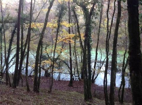 Promenade en automne