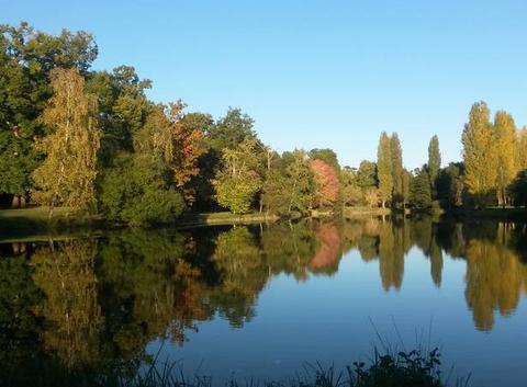 étang du Tâtre