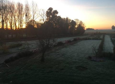 1ere gelée matinale