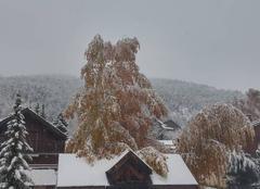 Arrivé de l'hiver, 1ère grosse chute de neige !!