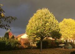 Giboulées d'automne