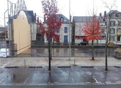 Pluie dimanche 13 novembre 2016