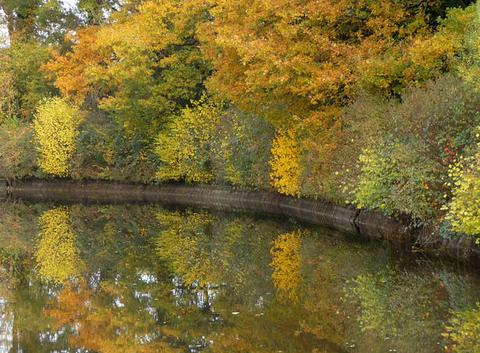 Automne au bord du Canal du Centre en Charolais
