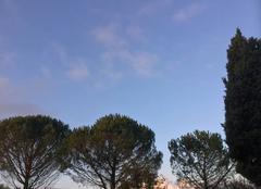 Un beau ciel bleu ce matin
