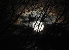 La super lune se lève
