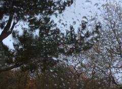 Tempête Braslou 37120 Pluie et vent sur le