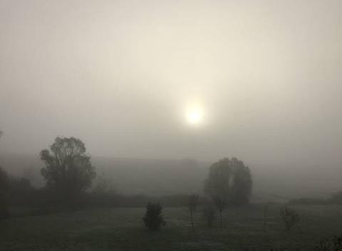 Brouillard et froid à 9h20