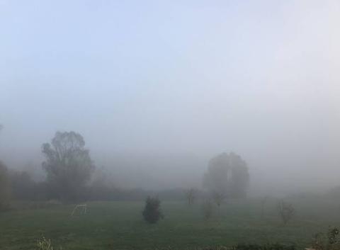 Brouillard dense et froid