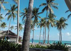 Chaleur Punta Cana Plage club med