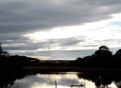 La Reserve ornithologique de Pichelèbe
