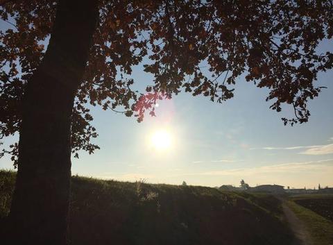 Campagne moursoise sous le soleil cet après-midi