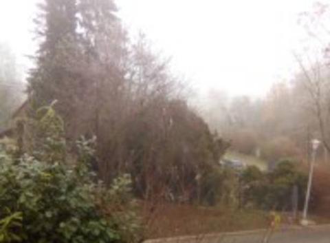 Pourquoi les brouillard sont à l'est