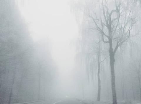 Brouillard et givre