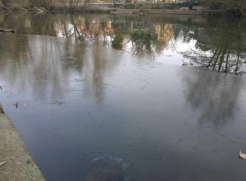 Fortes gelées ce matin en Alsace.
