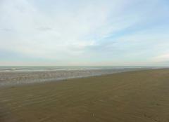 La plage et la Mer du Nord - dans la matinée, jeudi 08/12.